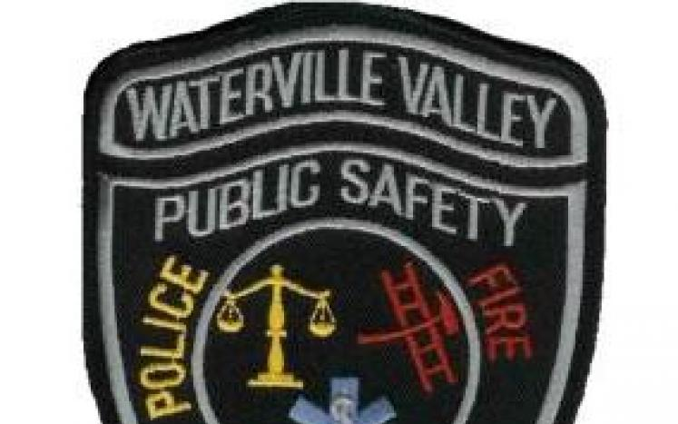 WVDPS Badge